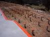 kordon-termite-barrier-bearers-and-joists_04